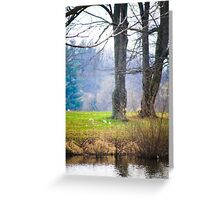ANOTHER DAY AT THE POND Greeting Card
