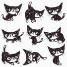 Nine poses of kitten by Toru Sanogawa