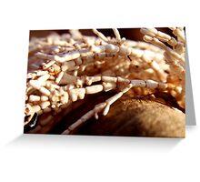 Brittle Bones Greeting Card