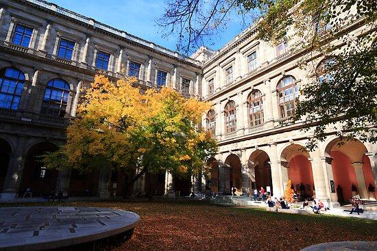 University interiour by zumi