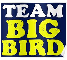 Team Big Bird Poster