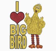 I Love Big Bird Kids Clothes