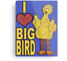 I Love Big Bird Metal Print