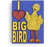 I Love Big Bird Canvas Print