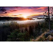 Foggy Sunrise  Photographic Print