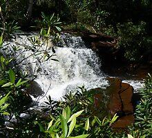 Serenity in Australia by Redlilli