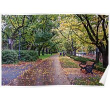 Autumn in Rosalind Park Poster