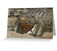 Open wide….. Greeting Card