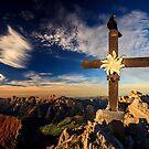 a bird on a cross by Zoltán Duray