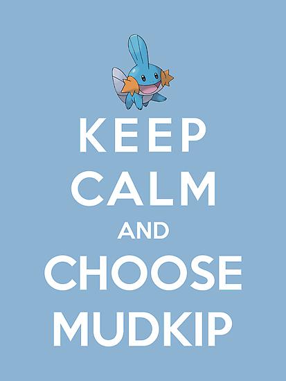 Keep Calm And Choose Mudkip by Phaedrart
