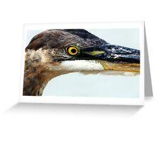 Grey Heron Greeting Card