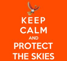 Keep Calm And Protect The Skies by Phaedrart