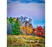 Painted Autumn Photographic Print