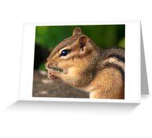 Chipmunk Hands Greeting Card