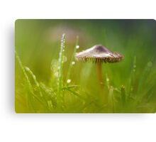 Mesmerizing Mushroom.... Canvas Print