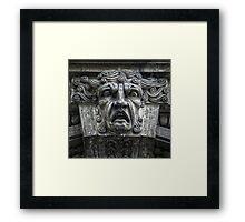 Face of Fury Framed Print