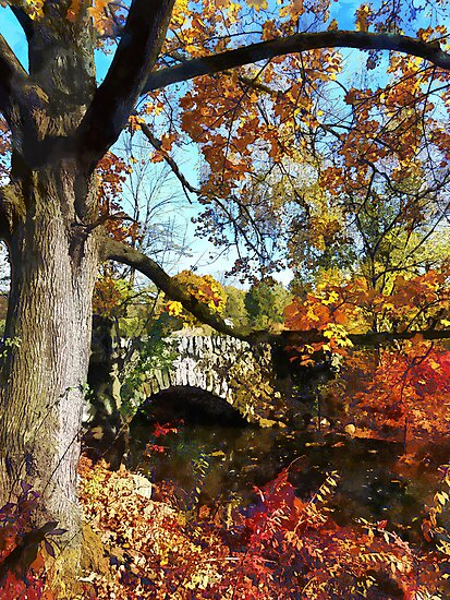 Autumn Tree by Small Stone Bridge by Susan Savad