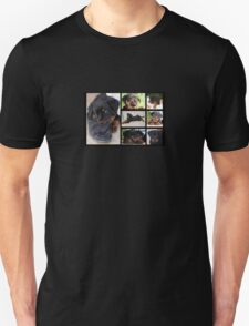 Collage Of Cute Female Rottweiler Puppy T-Shirt