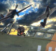 Hurricane Heroes by Nigel Bangert
