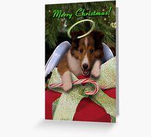 Christmas Angel Sheltie Greeting Card