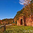 Ruins of Hwy 123 by Lisa G. Putman
