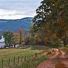 Winding Road to Walnut Grove by Lisa G. Putman