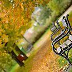 Prague in the fall by Denitsa Dabizheva