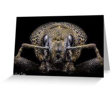'Portrait Of A Weevil' Greeting Card