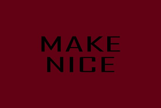 MAKE NICE by Vana Shipton