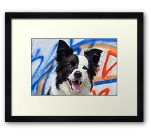 Judy on colours Framed Print
