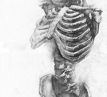 Skeleton Anatomy  by MrDave888