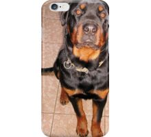 Portrait Of A Young Rottweiler Male Sitting iPhone Case/Skin