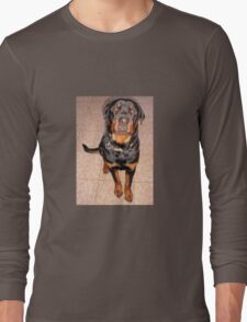 Portrait Of A Young Rottweiler Male Sitting Long Sleeve T-Shirt
