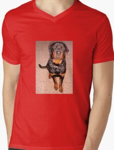 Portrait Of A Young Rottweiler Male Sitting Mens V-Neck T-Shirt