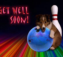 Get Well Soon Sheltie Puppy by jkartlife