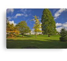 Blue sky and Autumn colours Canvas Print