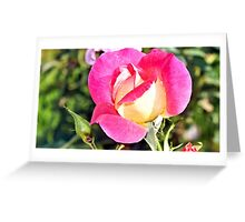 A  Fall Time Rose Greeting Card