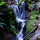 Spring Bluff Falls by GrantRolphPhoto
