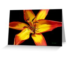 Red and Yellow Lily Greeting Card