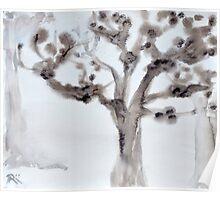 tree in mist Poster