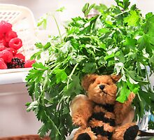 Bumble Bear Flew Into the Fridge Today! by Heather Friedman