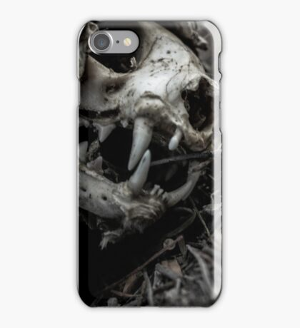 Decaying Cat iPhone Case/Skin