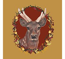 Deer Print without logo Photographic Print