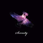 Serenity Ship with Writing by keldamg