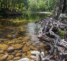 Northern Australian Serenity by Richard Murias