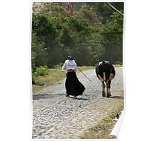 Girl Herding a Cow Down the Road Poster