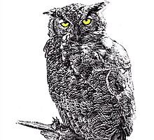 Great Horned Owl: Flushed into The Sunlight by John Williams