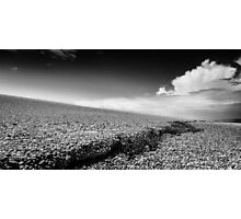 Chesil Beach - Portland, Dorset - Jurassic Coast - Black and White Photograph Photographic Print