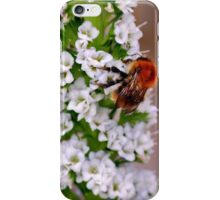 Bzzzz iPhone Case/Skin