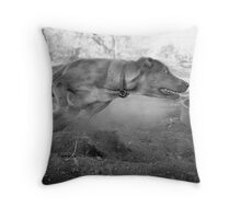 Dogs with game face on .33 Throw Pillow